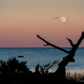 Księżyc nad Zatoką Pucką, fotograf Paweł Litwin